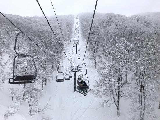 パウダー最高 阿仁スキー場のクチコミ画像3