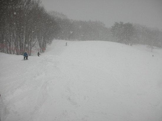 新雪狙い|水上高原藤原スキー場のクチコミ画像2