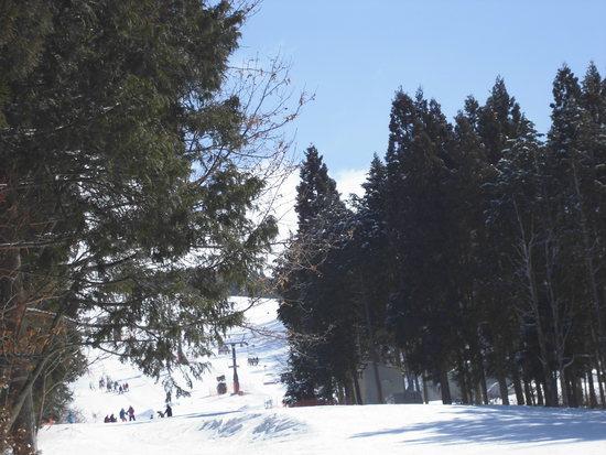 もう少し|鷲ヶ岳スキー場のクチコミ画像
