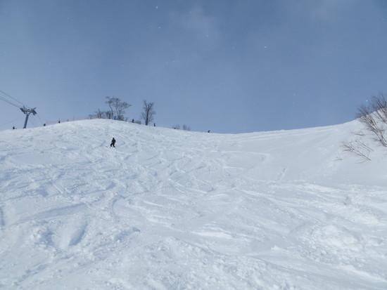 大きなスキー場です|雫石スキー場のクチコミ画像