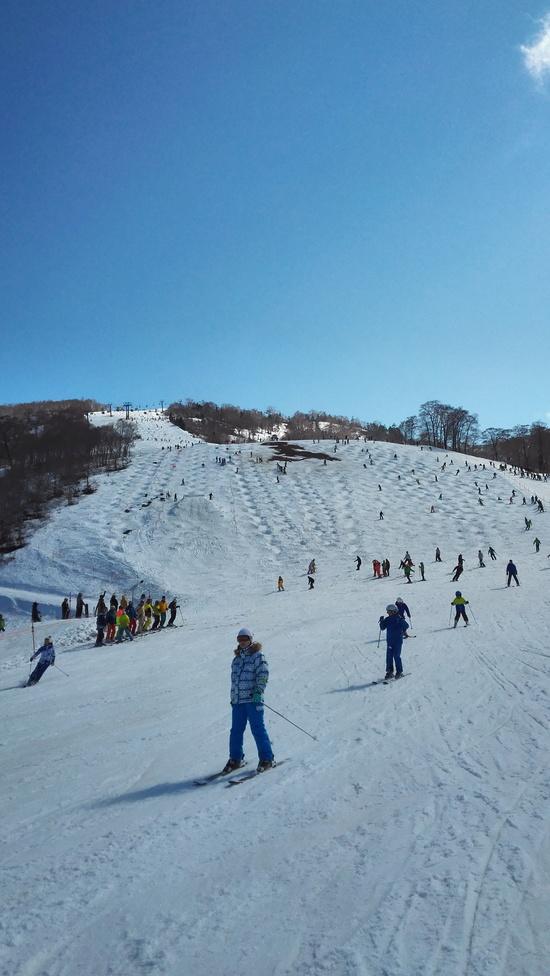 こぶりんこ!|かぐらスキー場のクチコミ画像