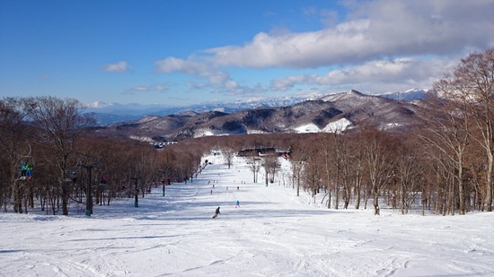 やっぱり「たんばら」雪質最高!|たんばらスキーパークのクチコミ画像