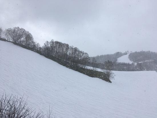 飛騨ほおのき平スキー場のフォトギャラリー6