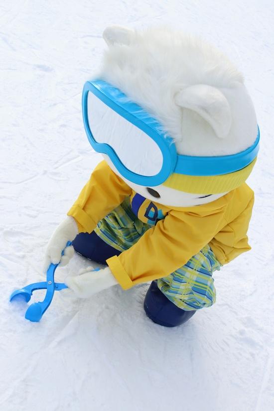 ヘブンスそのはら SNOW WORLDのフォトギャラリー3
