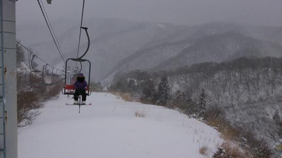 雪が、フワフワ|余呉高原リゾート・ヤップのクチコミ画像
