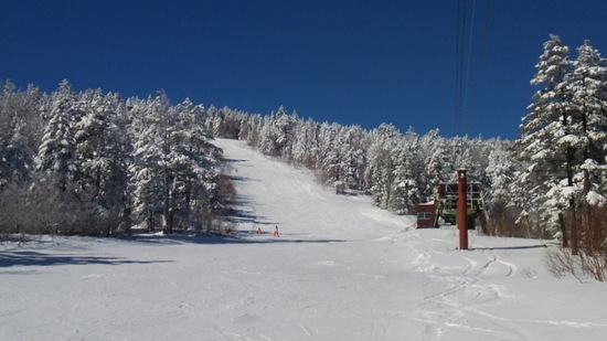 空き過ぎで心配..|パルコールつま恋スキーリゾートのクチコミ画像