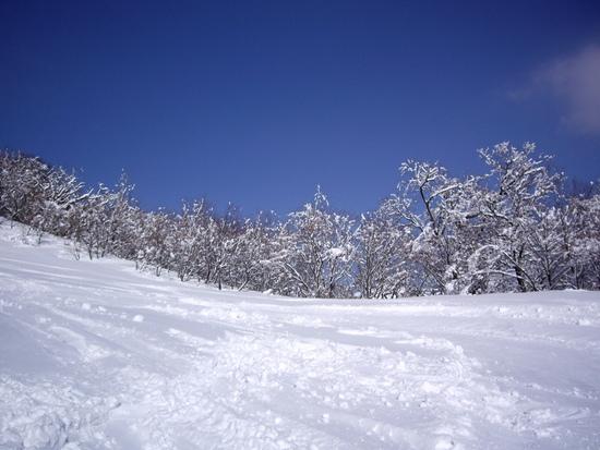 最高のスキー日和|氷ノ山国際スキー場のクチコミ画像2