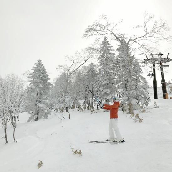 雪が好き❄️|志賀高原リゾート中央エリア(サンバレー〜一の瀬)のクチコミ画像