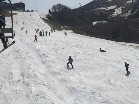 暑い|白馬八方尾根スキー場のクチコミ画像