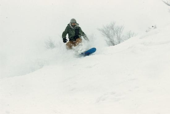 パウダーを全身で|白馬八方尾根スキー場のクチコミ画像2