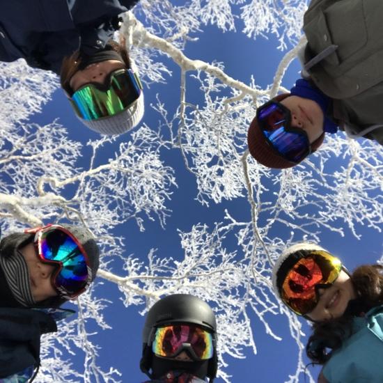 スノーボード ゴレンジャー|安比高原スキー場のクチコミ画像
