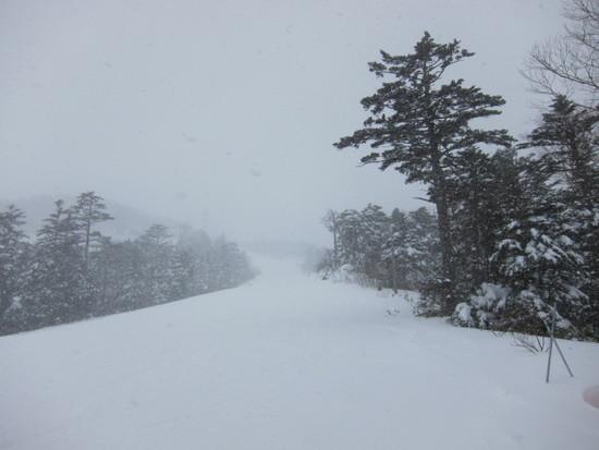 2013/12/14(土) 長野県 おんたけ2240の速報 Ontake2240のクチコミ画像2