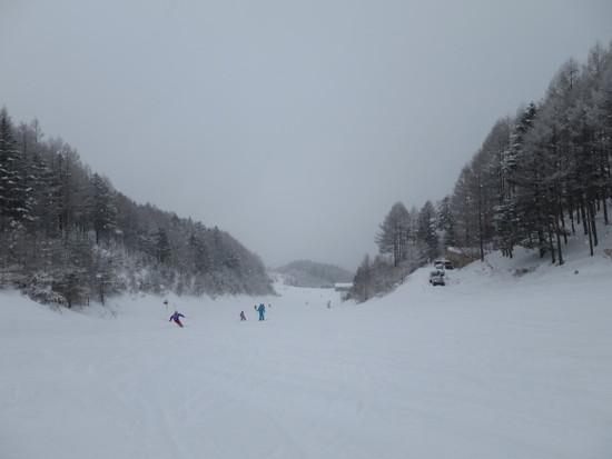 ユキ!雪!ゆきーっ!!|木曽福島スキー場のクチコミ画像