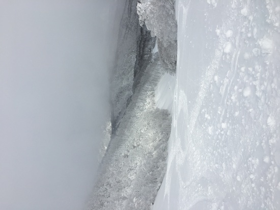 極上パウダー|タングラムスキーサーカスのクチコミ画像3