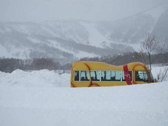 2013/02/04 (月) 北海道ルスツの速報|ルスツリゾートのクチコミ画像