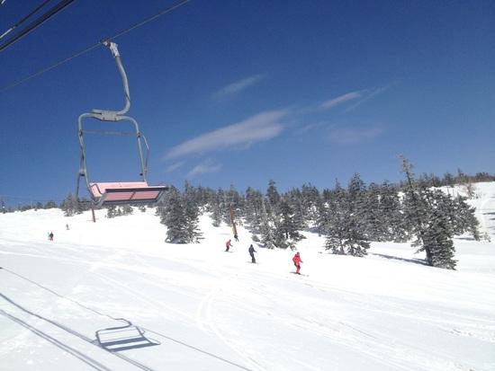 雪質最高!|志賀高原 熊の湯スキー場のクチコミ画像1