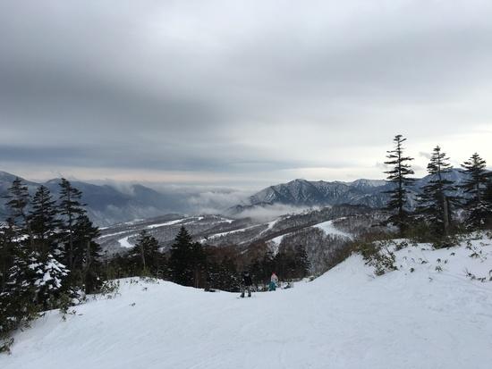 雪質はまずまず|かぐらスキー場のクチコミ画像