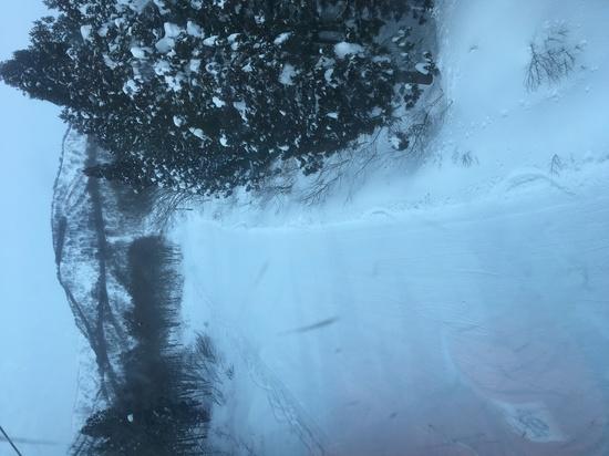 良い雪でした|かぐらスキー場のクチコミ画像
