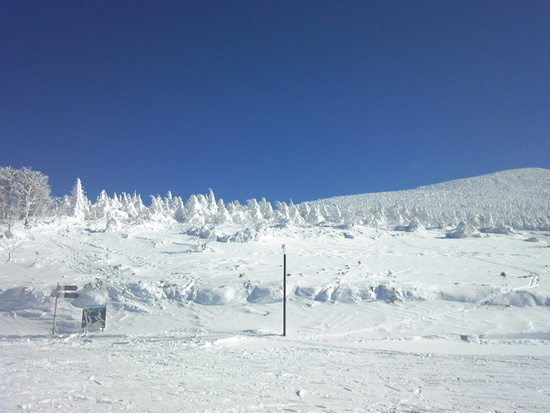 初めて見た樹氷|箕輪スキー場のクチコミ画像
