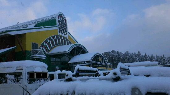 今季初のたっぷり新雪|高鷲スノーパークのクチコミ画像