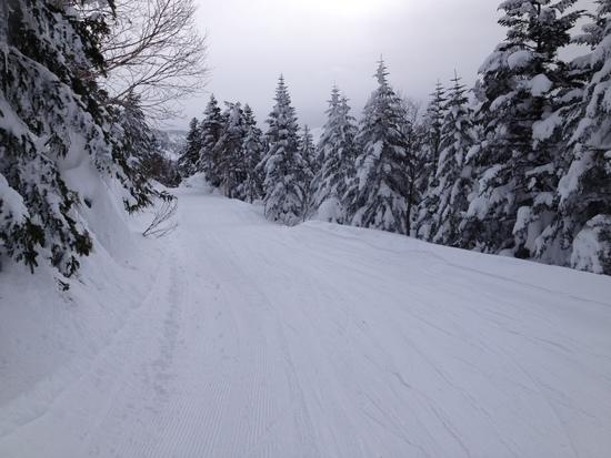 落ち着いてじっくり滑れます 志賀高原 熊の湯スキー場のクチコミ画像2