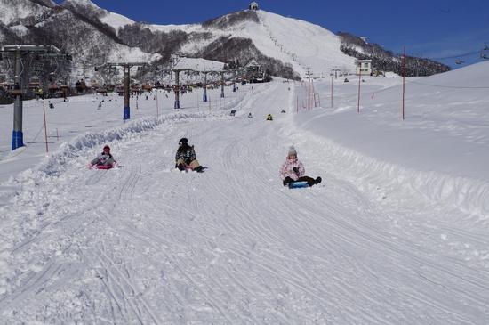 楽しめるコースに夢中|岩原スキー場のクチコミ画像