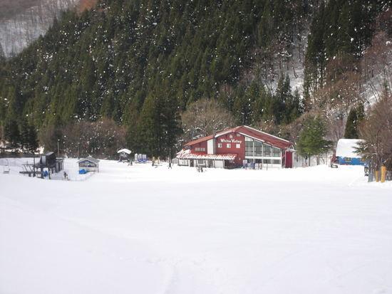 深雪狙い|ホワイトバレースキー場のクチコミ画像