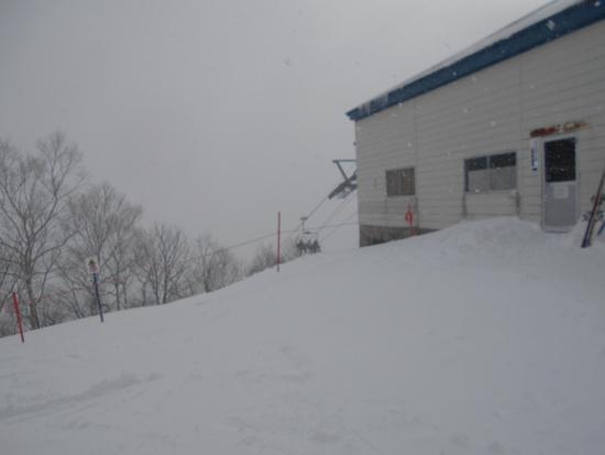 朝から雪が降っていた|めいほうスキー場のクチコミ画像