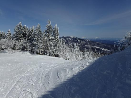 寒波の翌日行ってみました|パルコールつま恋スキーリゾートのクチコミ画像3