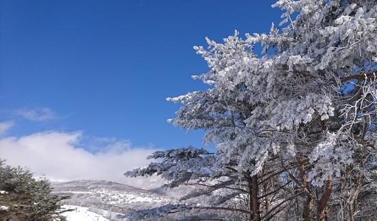 気温は低い|菅平高原スノーリゾートのクチコミ画像