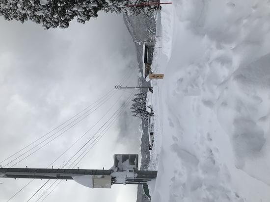ヘビーな大雪 野沢温泉スキー場のクチコミ画像