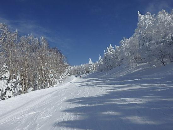 雪一色 2|竜王スキーパークのクチコミ画像