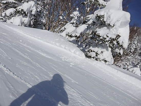 雪一色 2|竜王スキーパークのクチコミ画像2