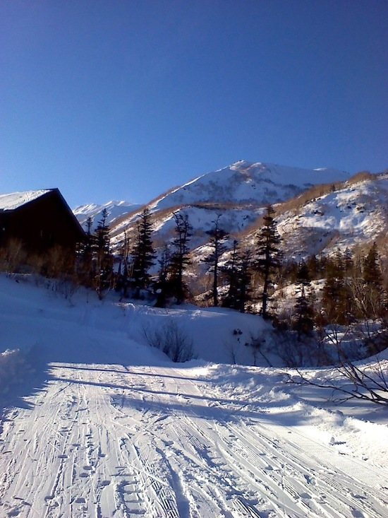 天気最高でした|栂池高原スキー場のクチコミ画像