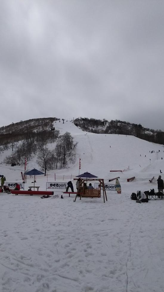 雪が少ない|かぐらスキー場のクチコミ画像