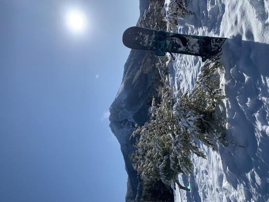 ゴンドラ降りてからの1枚|丸沼高原スキー場のクチコミ画像