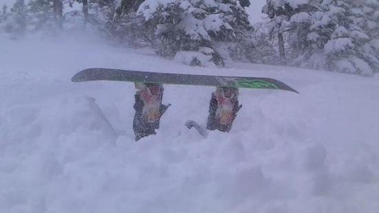 3月でパウパウ!!|かぐらスキー場のクチコミ画像