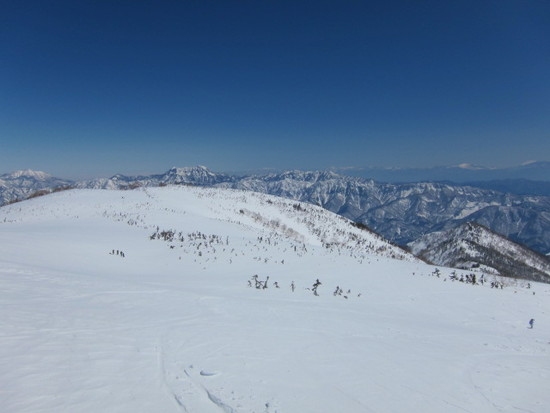 ゲレンデスキー、ヘリスキーも共に最高!|栂池高原スキー場のクチコミ画像