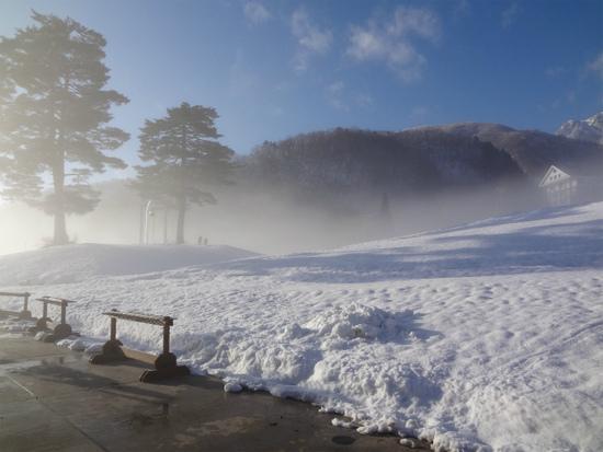 新雪の深雪!|エイブル白馬五竜のクチコミ画像