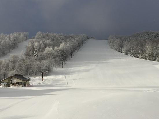 新雪降って朝一いいですよ|菅平高原スノーリゾートのクチコミ画像