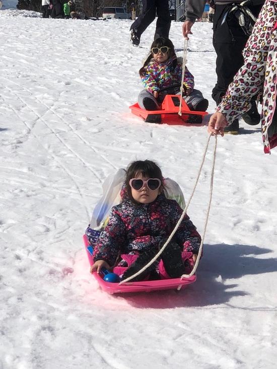 5歳2歳の孫 雪デビュー!!|スキージャム勝山のクチコミ画像