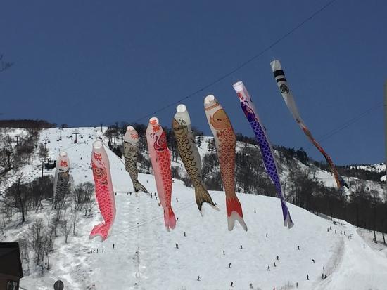来シーズンが楽しみ!|かぐらスキー場のクチコミ画像