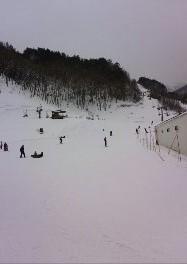 穴場スキー場|信州松本 野麦峠スキー場のクチコミ画像