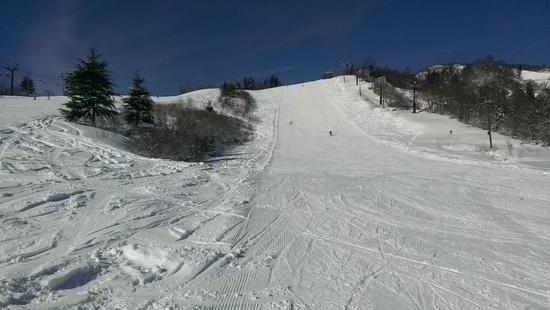 ファミリースキーで楽しめる|戸狩温泉スキー場のクチコミ画像