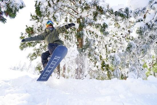 輝くツリーラン!|上越国際スキー場のクチコミ画像