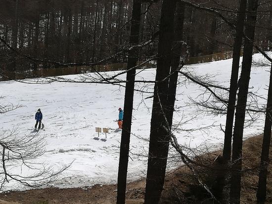 新生八千穂の底力|八千穂高原スキー場のクチコミ画像2