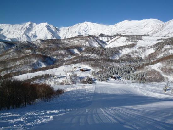 白く輝く白馬連峰|栂池高原スキー場のクチコミ画像