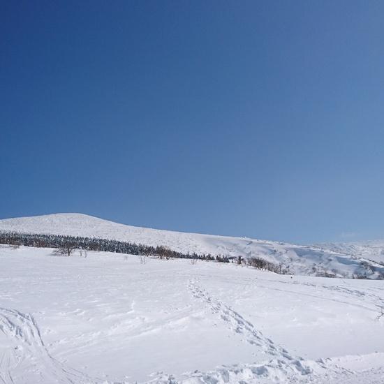 晴れたら、この景色|箕輪スキー場のクチコミ画像