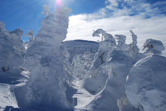 モンスター|蔵王温泉スキー場のクチコミ画像