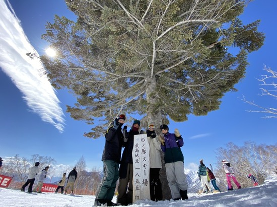 いろいろ楽しみました!|妙高杉ノ原スキー場のクチコミ画像1